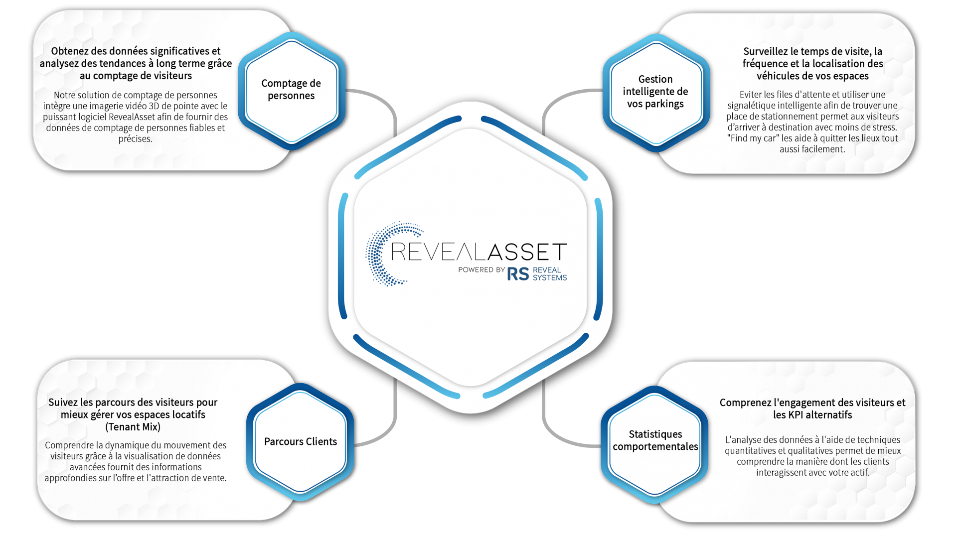 RevealAsset Powered by Reveal Systems 4 Pillars